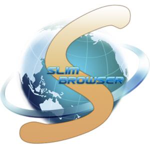 SlimBrowser 7.00 Build 125 + Portable [Multi/Ru]