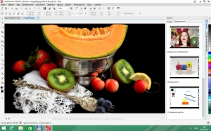 CorelDRAW Graphics Suite X7 17.6.0.1021 Special Edition RePack by -{A.L.E.X.}- [Multi/Ru]
