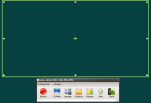 oCam Screen Recorder v136.0+Portable [2015,Multi/Rus]