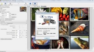 Benvista PhotoZoom Pro 6.0.6 [Multi/Ru]