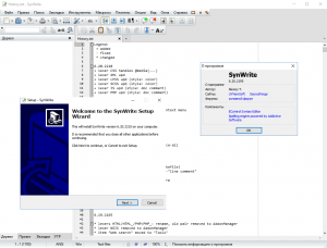 SynWrite 6.20.2210 [Multi/Ru]