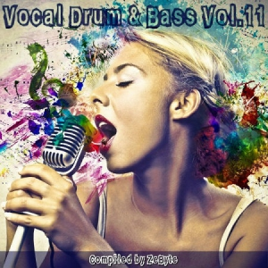 VA - Vocal Drum & Bass Vol.11 [Compiled by Zebyte]