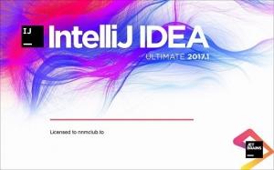 JetBrains IntelliJ IDEA Ultimate 2017.1 Build #IU-171.3780.95 [En]