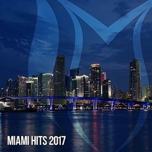 VA - Miami Hits