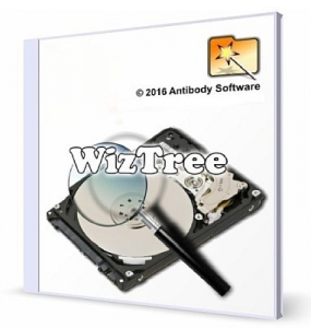 WizTree 3.38 + Portable [Multi/Ru]