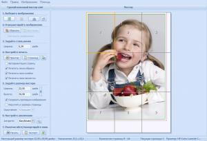 RonyaSoft Poster Printer 3.2.17 RePack (& Portable) by ZVSRus [Ru/En]