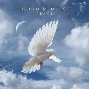 Liquid Mind - Liquid Mind XII: Peace