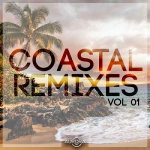 VA - Coastal Remixes Vol.01