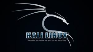 kali-linux VBox 2018.2 [amd64] 1xDVD
