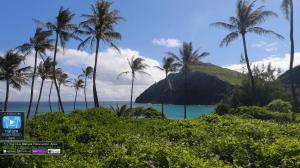 Всемирное природное наследие: Всемирный рай (Часть 2)
