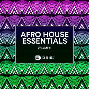 VA - Afro House Essentials Vol.01