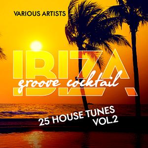 VA - Ibiza Groove Cocktail [25 House Tunes] Vol.2
