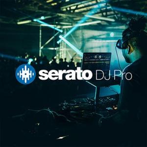 Serato DJ Pro 2.2.0 (22097) (x64) [En]