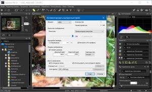 Nikon Capture NX-D 1.6.5 [Multi/Ru]