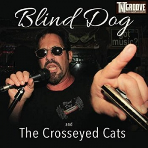 Jeff Vincent - Blind Dog And The Crosseyed Cats