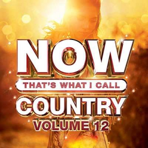 VA - Now That's What I Call Country Vol 12