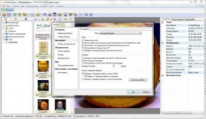 XnView 2.48 (Minimal-Standard-Extended) + portable [Multi/Ru]