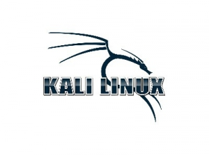 Kali Linux 2019.2 (ex. BackTrack) [Аудит безопасности, хакинг] [amd64, i386] 9xDVD