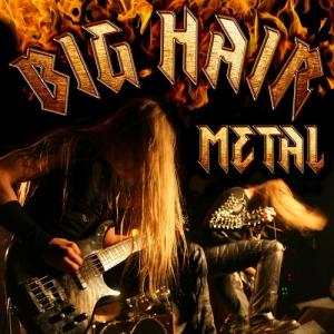 VA - Big Hair Metal