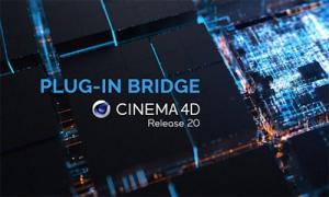 Bridge - Cinema 4D R20 [En]