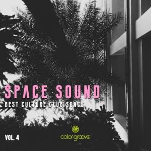 VA - Space Sound Vol. 4 (Best Culture Club Songs)