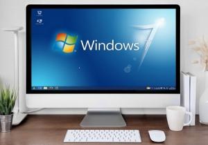 Windows 7 для Linux Mint Sylvia 18.3 [64] 1xDVD