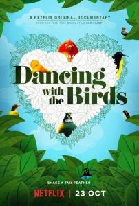 Танцы с птицами