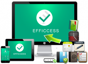Efficcess Pro 5.60 Build 556 + Portable [Multi/Ru]