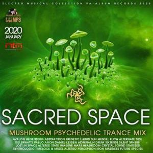 VA - Sacred Space: Mushroom Psy Trance Mix