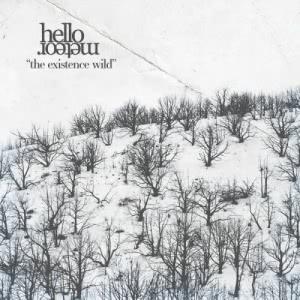 Hello Meteor - The Existence Wild