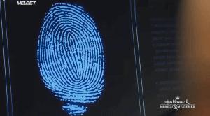 Расследования на Мартас-Винъярде: Пронизанный обманом