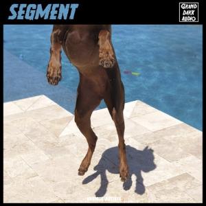 VA - Segment