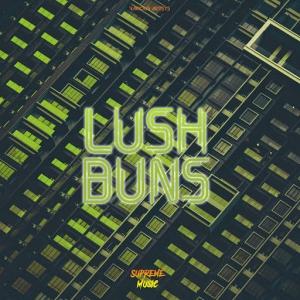 VA - Lush Buns