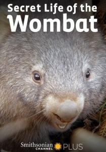 Тайная жизнь вомбата / Secret Life of the Womba