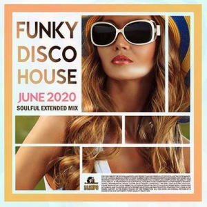 VA - Funky Disco House: Soulful Extended Mix