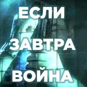 Если завтра война - Константин Душенов