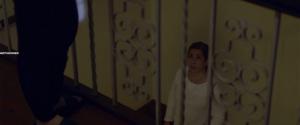 Призрак в стекле 2: Преследуемые призраком