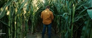 Ферма страха