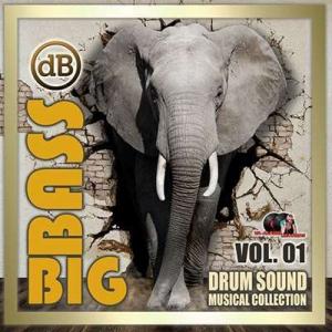 VA - Big Bass: Drum Sound Musical Collection Vol.01