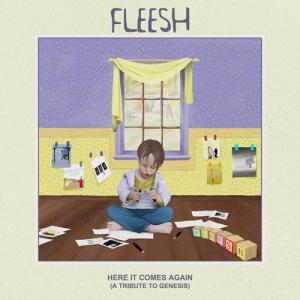 Fleesh - 4 Albums