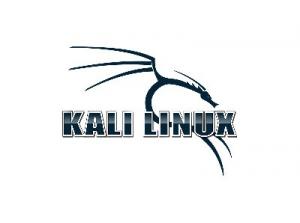Kali Linux 2021.2 (ex. BackTrack) [amd64, i386, arm] 6xDVD, 3xCD Аудит безопасности, хакинг.