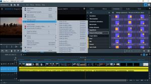 MAGIX Video Pro X13 19.0.1.123 (x64) [Multi]