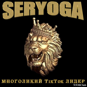 VA - SERYOGA - Многоликий TikTok лидер